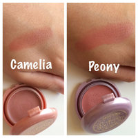 stila Beauty in Bloom Convertible Color Trio uploaded by Adrianna O.
