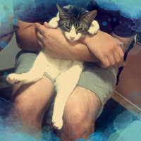 Purina Deli-Cat Cat Food uploaded by •Dacoda L.
