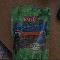 Kaytee Wild Bird Food Mealworms uploaded by Marleigh J.