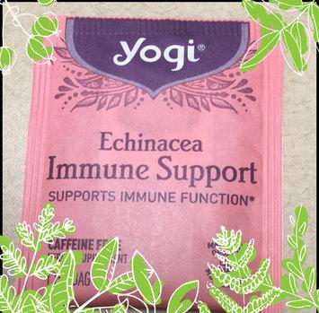 Photo of Yogi Tea's Yogi Echinacea Immune Support Herbal Tea Bags, 16 count, .85 oz, (Pack of 6) uploaded by Natalie S.