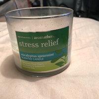 Bath & Body Works Aromatherapy Stress Relief - Eucalyptus Spearmint Scented Candle, 14.5 OZ uploaded by Amanda C.