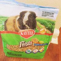 Kaytee Products Inc Kaytee Fiesta Max Guinea Pig Food uploaded by Kristi D.