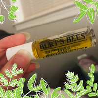 Burt's Bees Herbal Complexion Stick 0.26 oz (Pack of 2) uploaded by Lidia G.