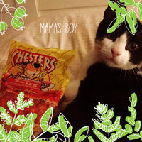 Chester's® Flamin' Hot® Fries uploaded by Alexandrea D.