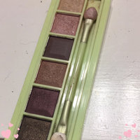 Pixi - Mesmerizing Mineral Palette Mineral Contour uploaded by Meaghann D.