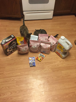 Photo of Purina PetCare Purina Beyond Turkey, Barley , and Cranberry Recipe 3lb uploaded by Nicole D.
