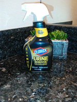 CLOROX COMPANY, THE Clorox Urine Remover for Stains & Odors 32oz uploaded by Rocksi R.