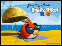 Rovio Entertainment Ltd Angry Birds Rio uploaded by Stacey M.