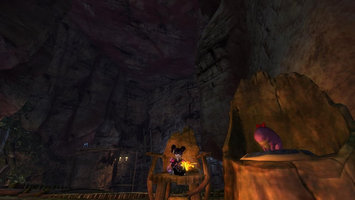 Guild Wars 2 Video Game uploaded by Donna M.