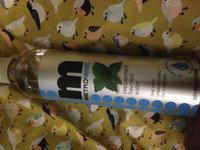 Metromint Water Beverage Peppermint Flavored uploaded by Jennifer A.