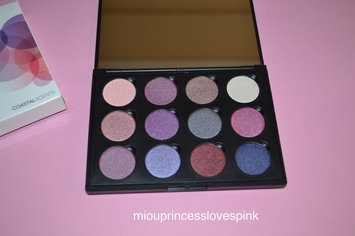 Coastal Scents Winterberry Palette uploaded by Marina S.