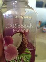 Bath & Body Works® CARIBBEAN ESCAPE Gentle Foaming Hand Soap uploaded by member-2697944e3