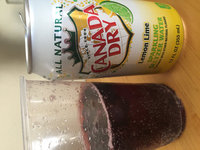 Canada Dry Sparkling Seltzer Water Lemon Lime - 12 PK uploaded by Andra C.