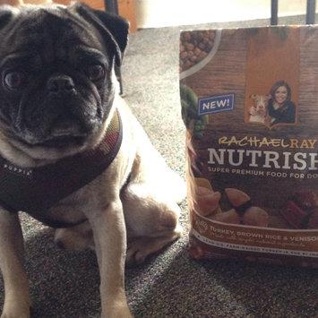 Photo of Rachael Ray™ Nutrish® Turkey, Brown Rice & Venison uploaded by Stephanie F.