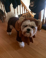 Star Wars Ewok Pet Costume - Large uploaded by Ashleigh S.