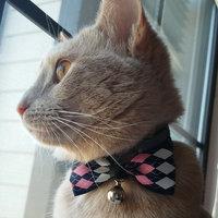 Temptations Mix Ups Chicken, Catnip & Cheddar Flavor Cat Treats uploaded by Laura C.
