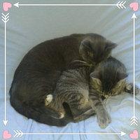 Friskies® Party Mix Cat Treats Original Crunch Chicken Liver & Turkey uploaded by Helen W.