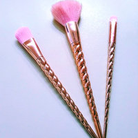 Sonia Kashuk® Cosmetic Brush Set uploaded by Jenny K.