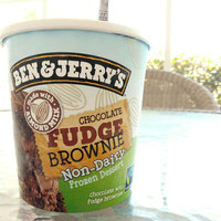 Ben & Jerry's® Chocolate Fudge Brownie Non-Dairy Frozen Dessert uploaded by Jennifer K.