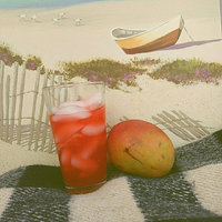 Hawaiian Punch Fruit Juicy Red Juice Drink uploaded by Cat B.