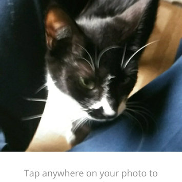 Photo uploaded to #FurryFriends by nephthys p.