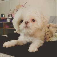 Greenie® Petite Dog Treats 15 oz. Box uploaded by Missy L.