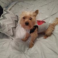 Greenies® Original Petite Dog Treats 36 oz. Box uploaded by Jessica R.