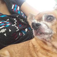 Royal CaninA Chihuahua 28TM Adult Dog Food uploaded by Pamela M.