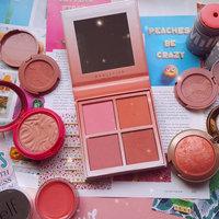 Anastasia Beverly Hills Holiday Blush Kits uploaded by savannah p.