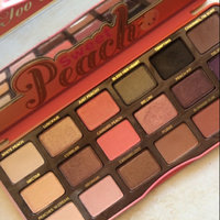 Too Faced Sweet Peach Eyeshadow Collection Palette uploaded by NAJWA |.
