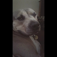 Veterinary Formula Flea & Tick Shampoo uploaded by cheyenne D.