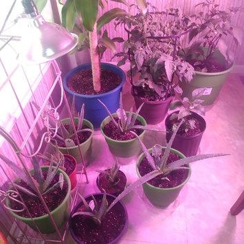 Photo uploaded to #GreenThumb by Nasharia B.