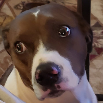Photo of Full Moon All Natural Human Grade Dog Treats, Beef Jerky, 14 Ounce uploaded by Sherri C.