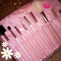 SHANY Cosmetics Urban Gal Collection Brush Set (12 Piece Natural Cosmetics Brushes with Leopard Magnetic Pouch), 13 Ounce uploaded by dafne i.