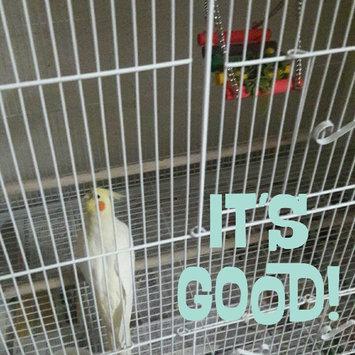 Photo of Sun Seed Kaytee Products Wild Bird Gold Spray Millet Treat uploaded by diya k.