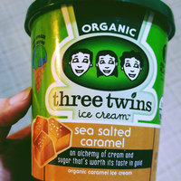 Three Twins Ice Cream Organic Sea Salted Caramel uploaded by Marisol P.