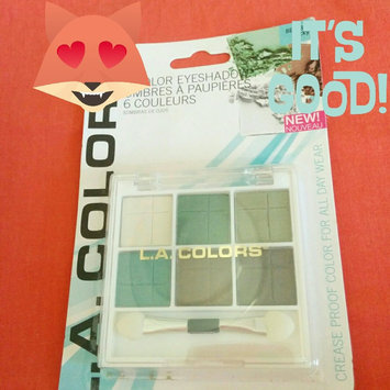 L.A. Colors 6 Color Eyeshadow, Delicate, .14 oz uploaded by Vik V.