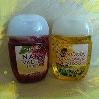 Bath & Body Works® PocketBac Fresh Sparkling Snow Anti-Bacterial Hand Gel uploaded by Yryna R.