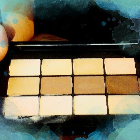 Lorac PRO Conceal/Contour Palette and Brush uploaded by Ashley W.