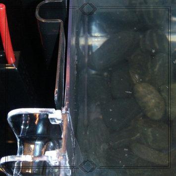 Marina Betta EZ Care Black Aquarium Kit, 0.7 Gallon () uploaded by Utica W.