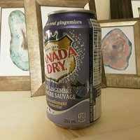 Canada Dry Blackberry Ginger Ale, 12 Fl Oz Cans, 12 Pack uploaded by Kendra J.