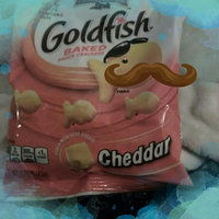 Pepperidge Farm Goldfish World Treasurers Cheddar Baked Snack Crackers uploaded by Holly N.