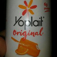 Yoplait® Original Orange Crème Yogurt uploaded by Michelle D.