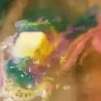 LUSH The Experimenter Bath Bomb uploaded by Valerie M.