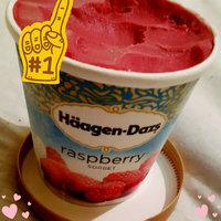 Haagen-Dazs Raspberry Sorbet uploaded by Stephanie C.
