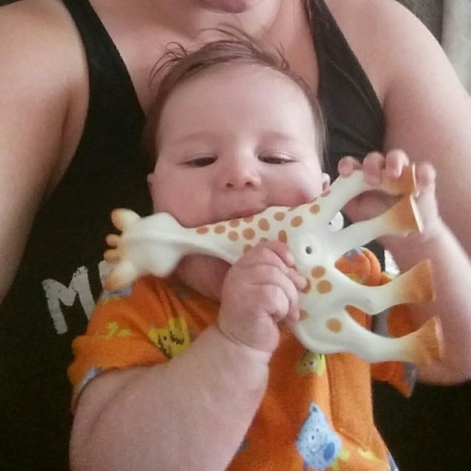 Vulli Sophie the Giraffe Teether uploaded by Alisa D.