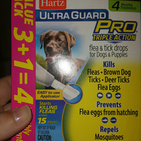 Hartz Ultra Guard Pro Triple Action Flea & Tick Drops for Dogs & Puppies 61-150lbs - 3 CT uploaded by NICOLE H.