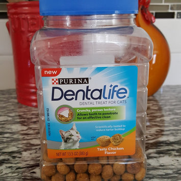 Photo of Purina® DentaLife Chicken Dental Cat Treats uploaded by Courtney w.