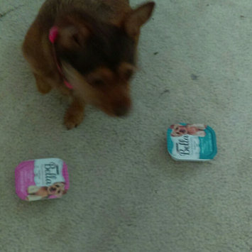 Photo of Purina® Bella Small Dog Food - Filet Mignon size: 3.5 Oz uploaded by Jennifer T.