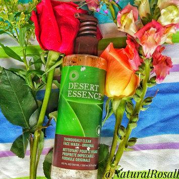 Photo of Desert Essence Gentle Nourishing Organic Cleanser, 6.7 fl oz uploaded by Rosalba M.